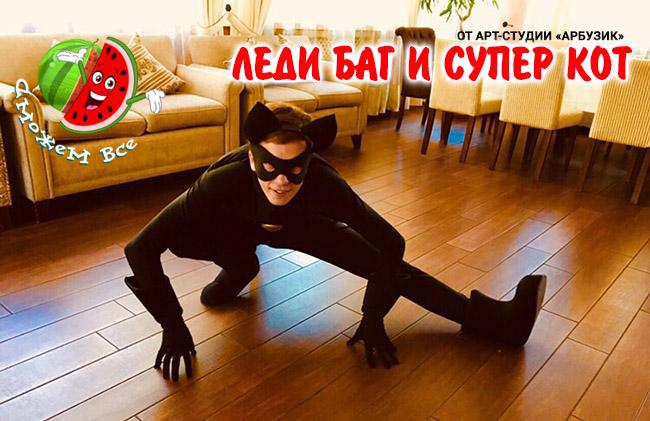 Леди Баг и Супер Кот